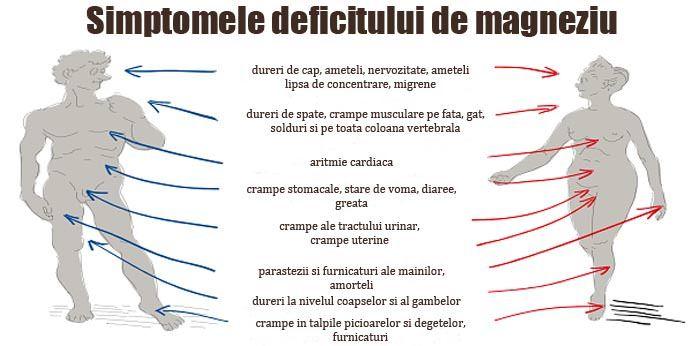 Imagini pentru simptomele deficitului de magneziu