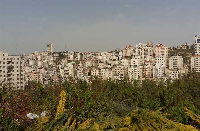 Palestina Oreste 2