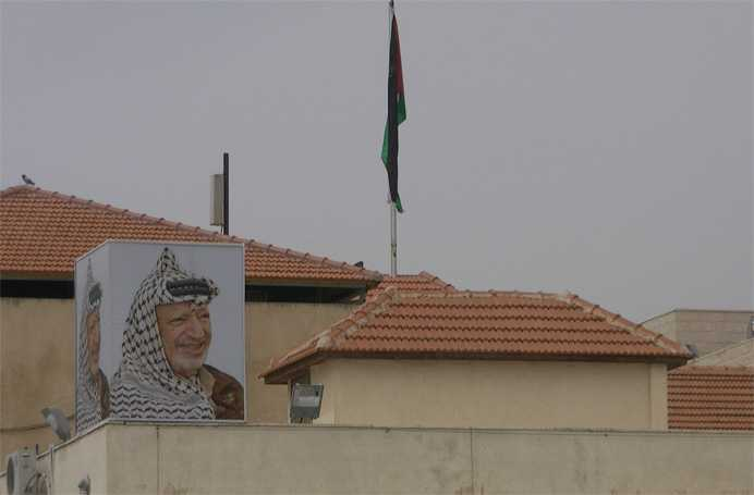 Palestina Oreste 6