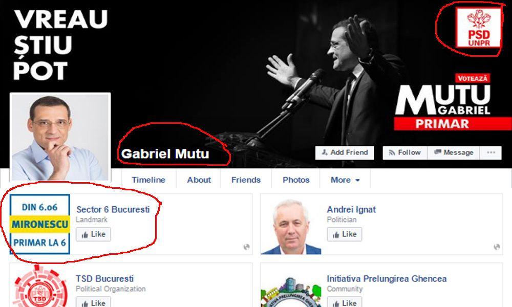 Mutu Mironescu facebook