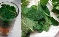 Licoarea care iti regenereaza ficatul! Este suficient sa bei un pahar pe zi!