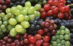 Pot vindeca orice! Sunt cunoscute inca din epoca romana! Vezi uimitoarele beneficii ale semintelor de struguri!