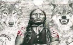 Lectia de viata a amerindienilor! Povestea lupilor iti va schimba modul de gandire!