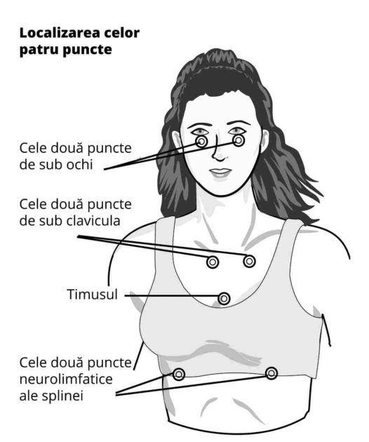 punctele_opt.png