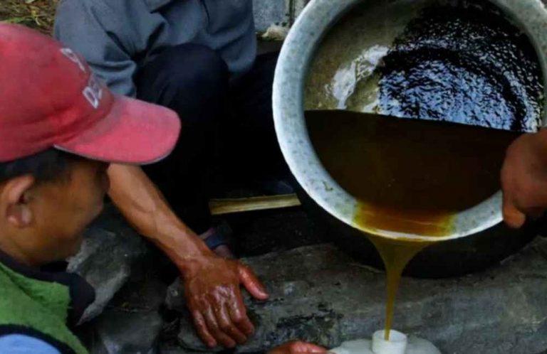 Mierea din Nepal care face miracole pentru barbati! Se vinde doar pe piata neagra!