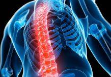 27 de saptamani dureri de spate